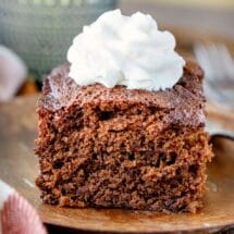Piece of gingerbread topped with whipped cream