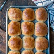 30 minute honey wheat rolls on a baking tray