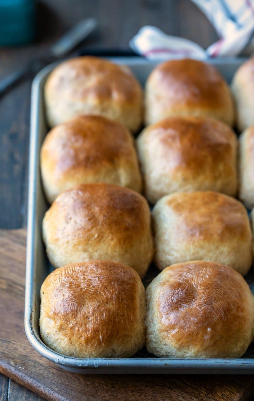 30 minute honey wheat rolls on a rimmed baking sheet