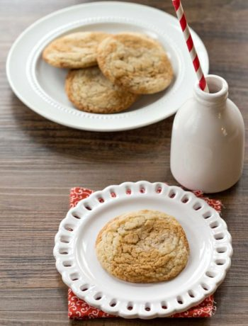 Gingerdoodles | #christmas #cookie #HolidayButter #shop