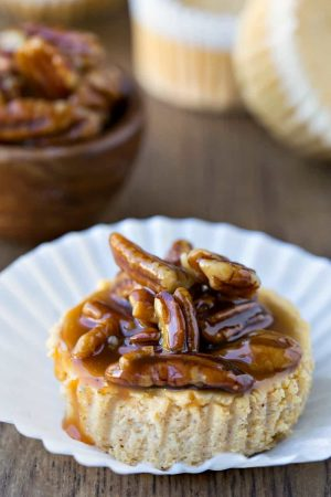 Mini Pumpkin Greek Yogurt Cheesecake Recipe