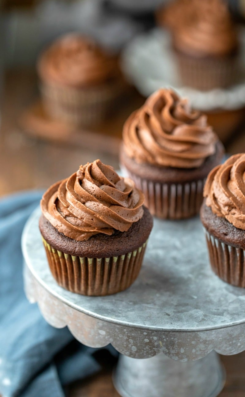 Chocolate cupcakes topped with swirled chocolate buttercream frosting