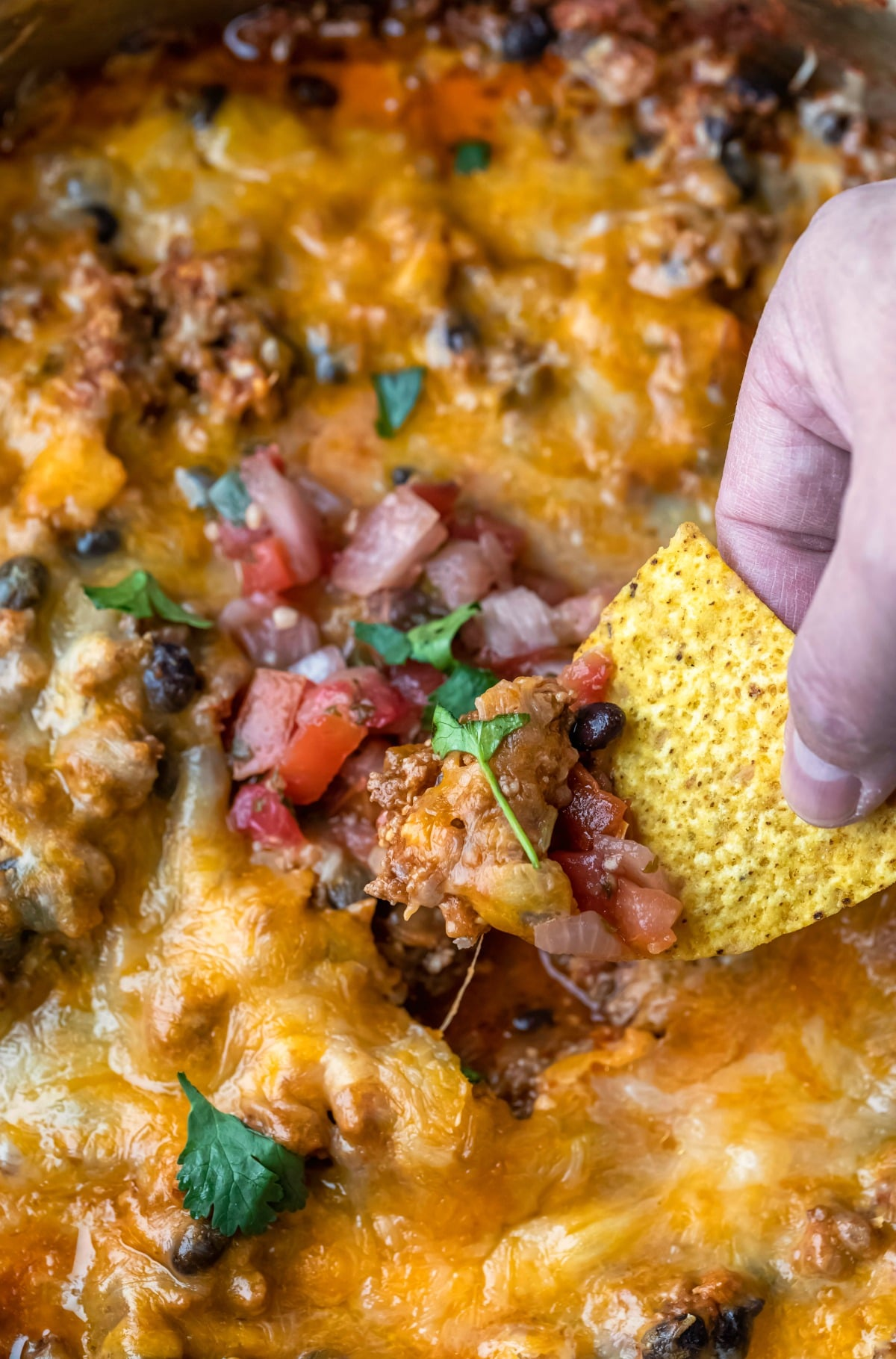 Tortilla chip scooping up taco casserole
