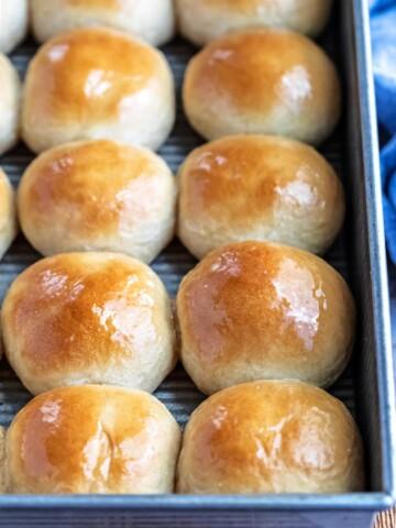 Pan of whole wheat dinner rolls