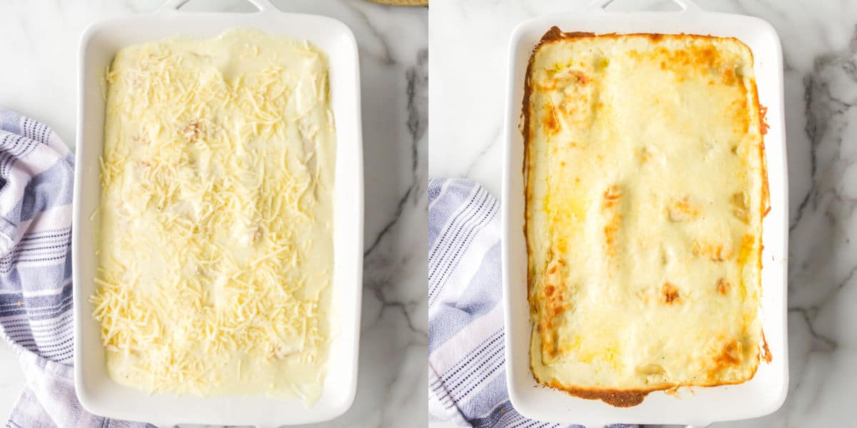 White chicken enchiladas topped with cheese sauce and shredded cheese.
