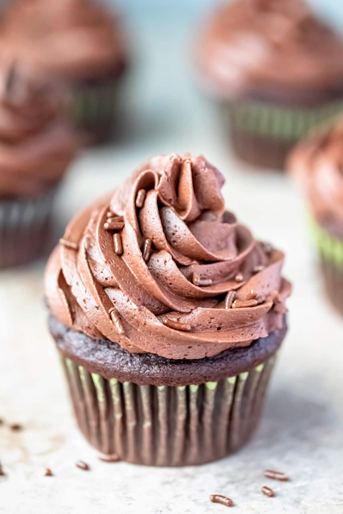 Chocolate cupcake with a swirl of chocolate buttercream frosting and chocolate sprinkles.