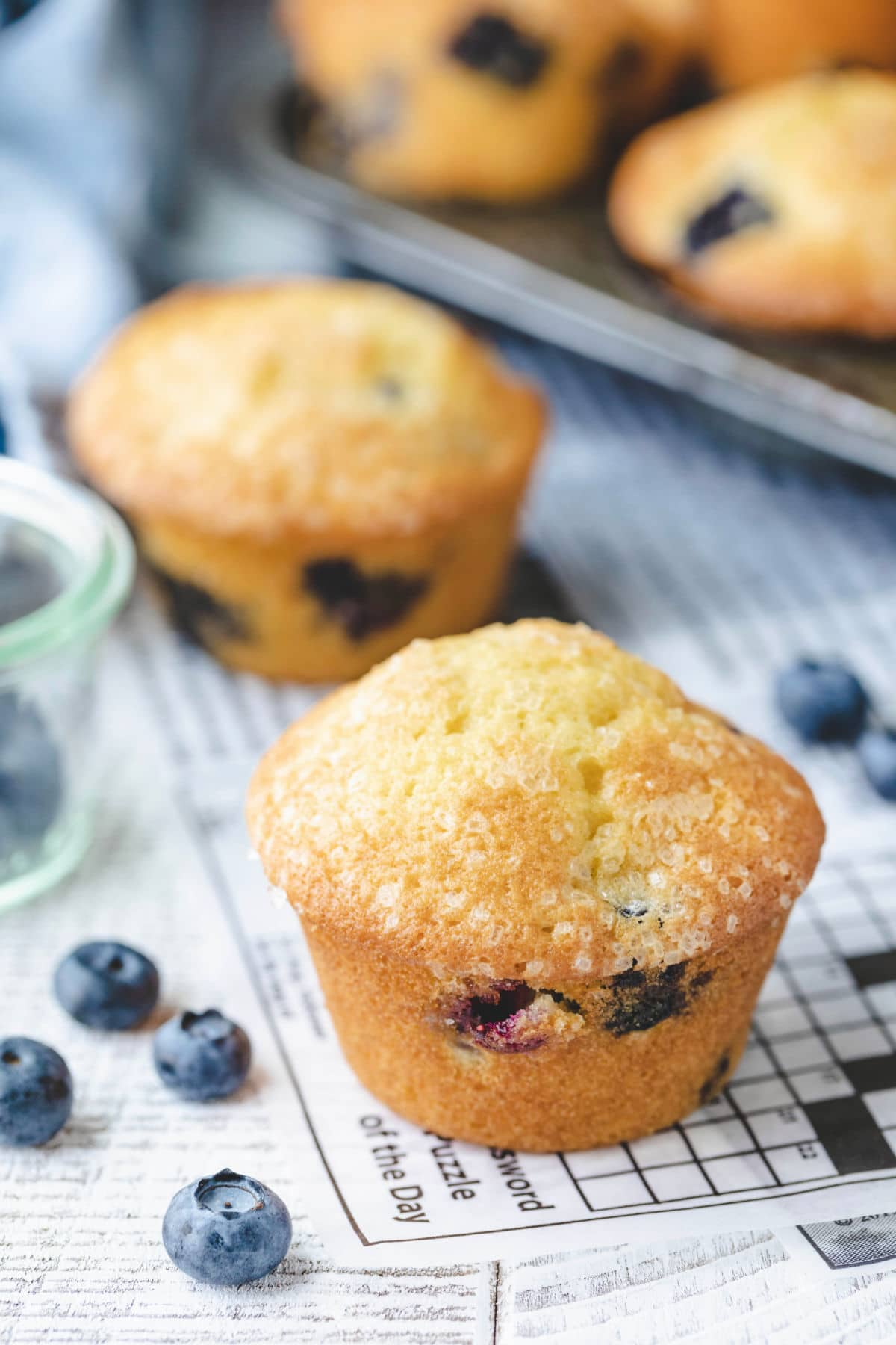 Blueberry muffins on a piece of deli paper with blueberries scattered around them.